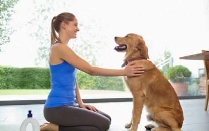 3 disciplines à connaître pour faire du sport avec son chien
